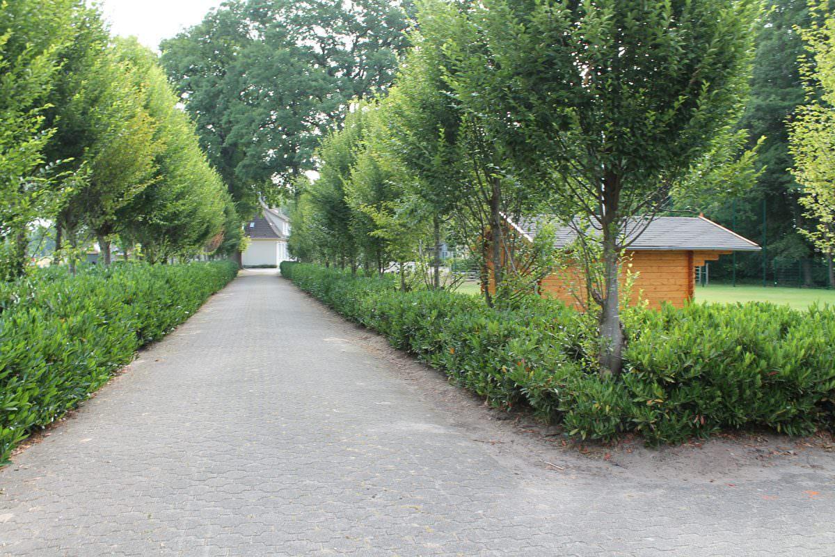 Gelände mit Rasenplatz in Kölkebeck